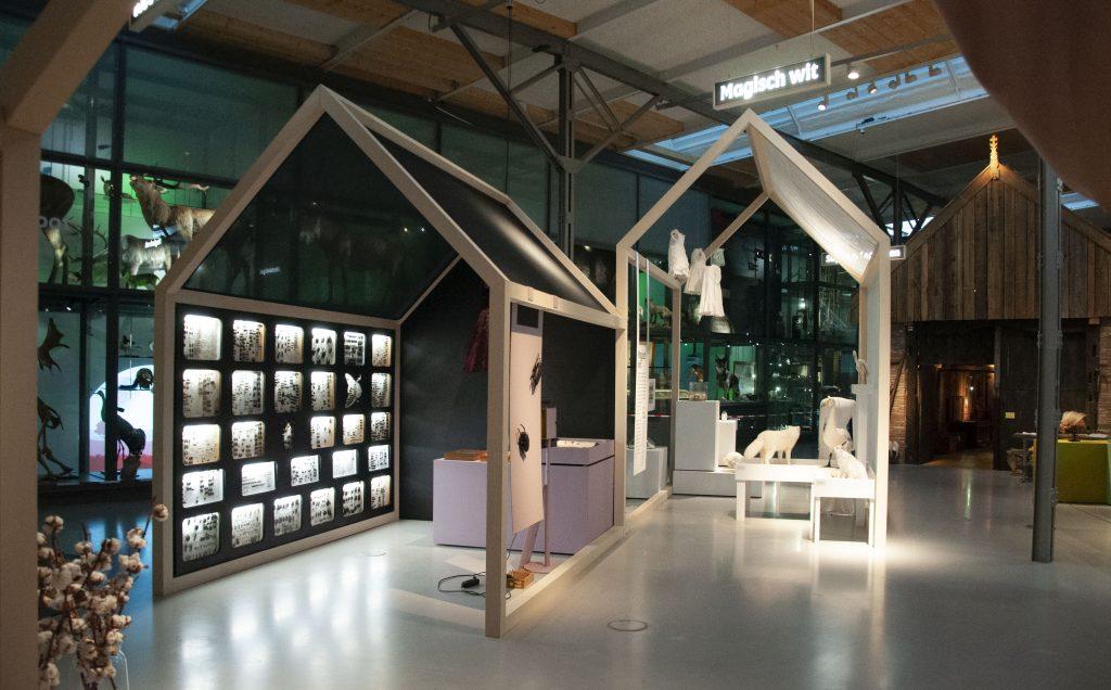 Museumfabriek, Wunderkammer, tentoonstellingsbouw